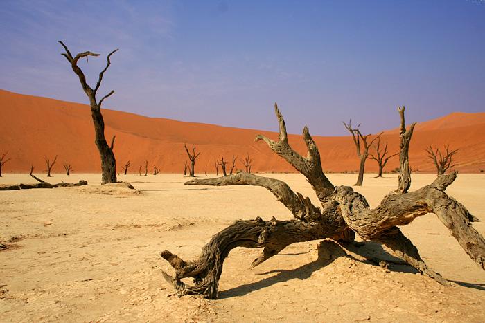 Dead Vlei, poušť Namib