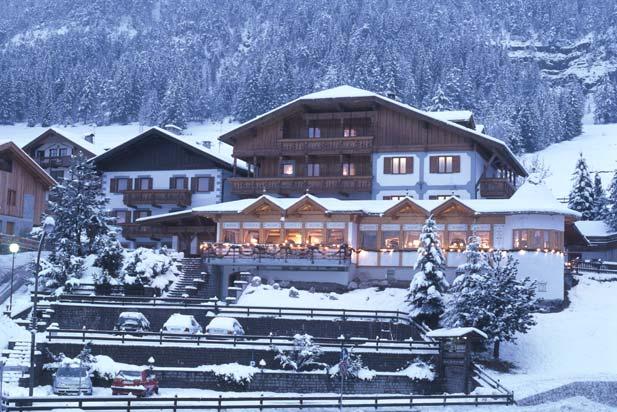 Hotel Ladinia -