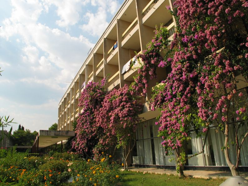 Alem - hotel