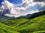 Kerala -