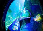 Mnichov, Sea Life