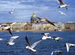 St. Peterburg -