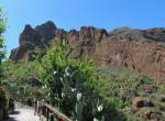 Kanárské ostrovy - Barranco De Guyedeque