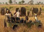 Národní park Zambezi, safari -