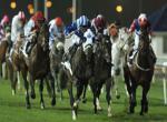 Dostihy - Dubaj World Cup - předběžná registrace
