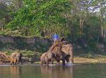 Chitwan -