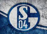 FC Schalke 04 - předběžná registrace