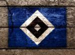 Hamburger SV, Bundesliga, bal��ky