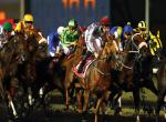 Dubai World Cup special