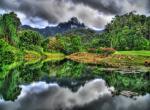 Malajsie - tropický prales -