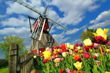 Holandsko, větrný mlýn