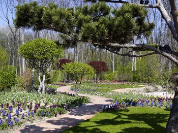 Tulln, mezinárodní výstava květin