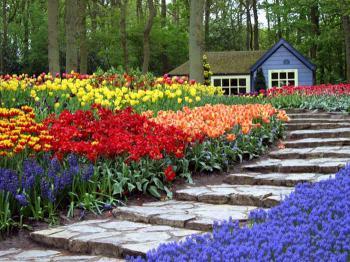 Nabídka poznávacích zájezdu do Holandska