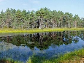 Estonsko -
