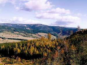 Orlické hory -