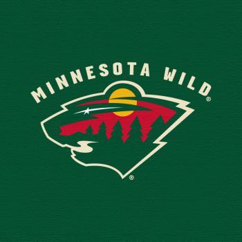 Minnesota Wild, logo